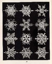 Image from Wilson Bentley book, Snow Crystals